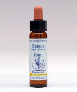Bloesemremedie Healing Herbs Beech 10ml