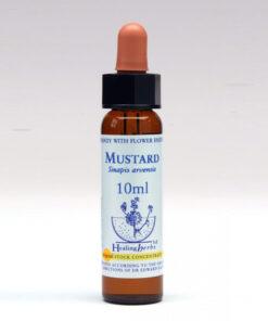 Bloesemremedie Healing Herbs Mustard 10ml